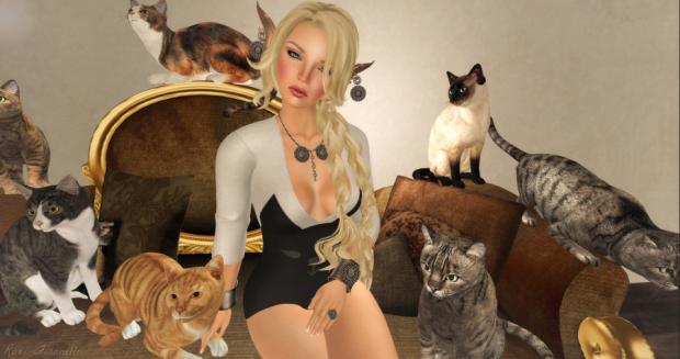 crazy-cat-lady-front