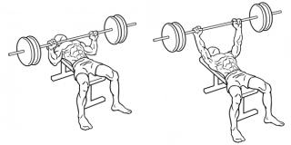 övning-bänkpress